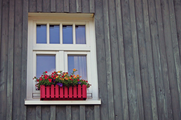 Can You Just Replace the Glass in Your Windows?