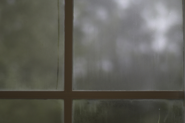 How to Prevent Foggy Windows This Winter